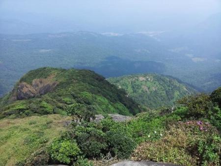 Agasthyamalai Hill