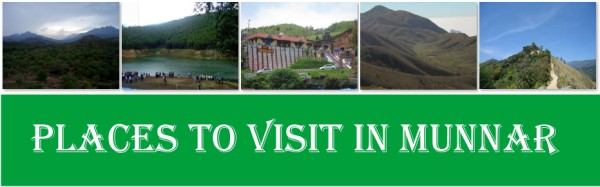 10 Places to Visit in Munnar