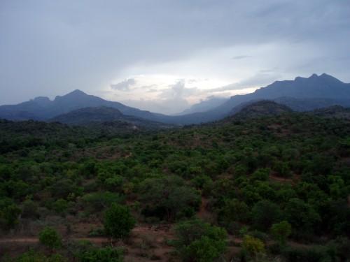 Chinnar Wild Life Sanctuary