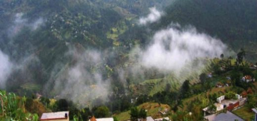 Ranikhet hill station