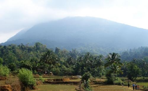 Dvaita Forest