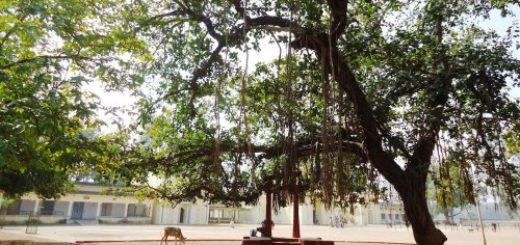 Ballavpur Wildlife Sanctuary