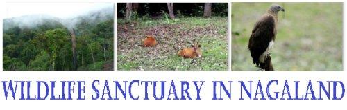 Wildlife Sanctuary in Nagaland