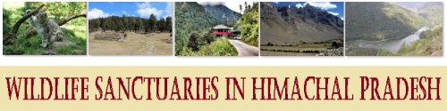 Wildlife Sanctuaries in Himachal Pradesh