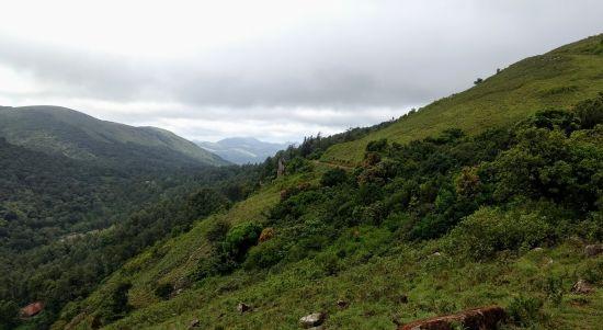 BR Hills in Karnataka