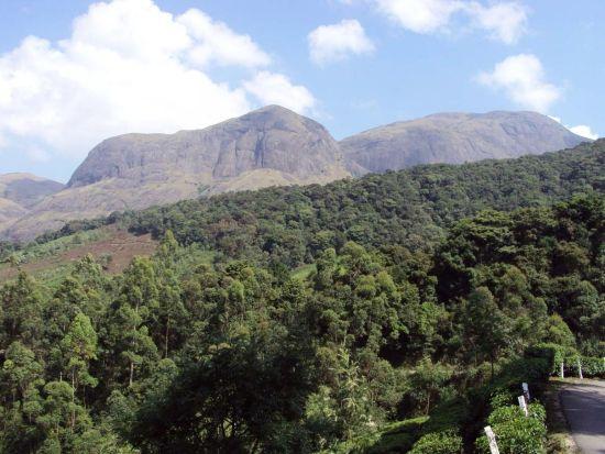 Kodachadri mountain