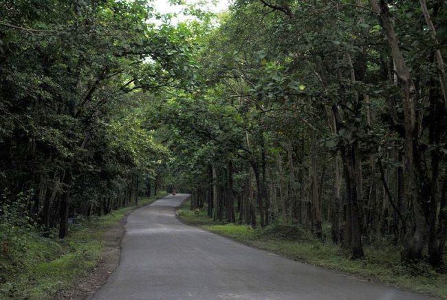 Anshi National Park